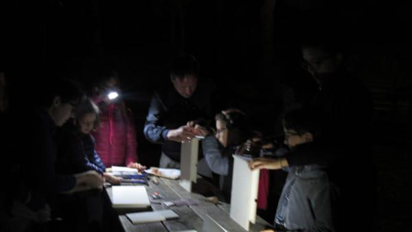 """Successo per la """"Bat Night"""" di Monteluco, per Spoleto d'Estate, serata alla scoperta dei pipistrelli"""