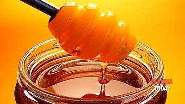 Mielinumbria a Foligno all'insegna di degustazioni, laboratori e convegni sull'apicoltura