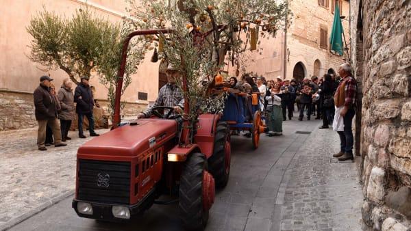 Festa dell'Olivo eSagra della Bruschetta a Spello, tutto pronto all'insegna della tradizione