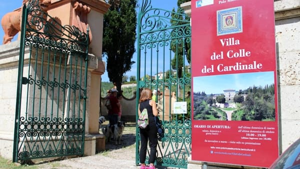 """""""Passeggiata a sei zampe"""" alla Villa Colle del Cardinale per sostenere i cani senza padrone"""