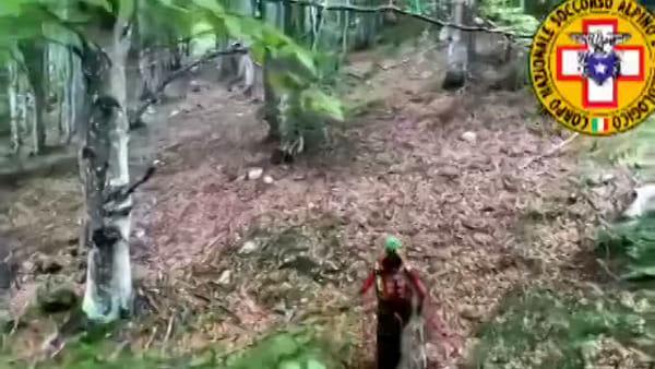VIDEO Umbro scomparso sulle montagne del Friuli: unità cinofile in azione