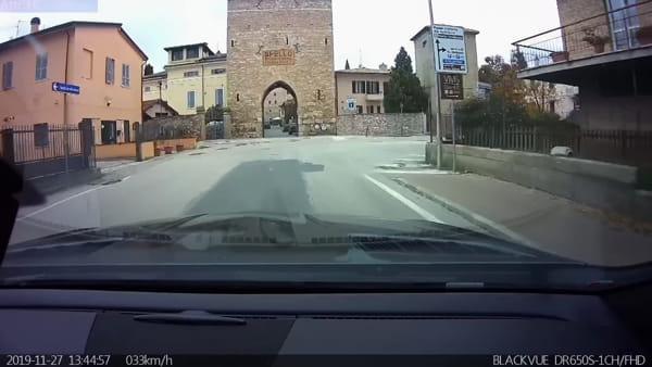 VIDEO Cinghiale a spasso sulla strada a Spello mentre passano le auto