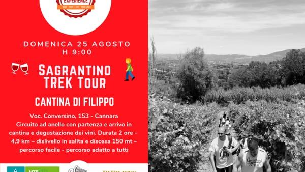 Sagrantino Experience, domenica 25 il Sagrantino trek tour dalla cantina Di Filippo