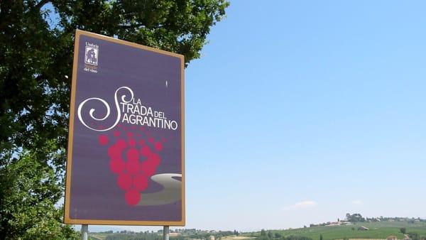 Strada del Sagrantino, tre itinerari per riscoprire la bellezza della zona di Montecchio