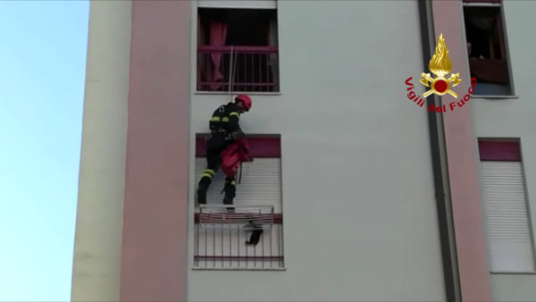 VIDEO Umbria, gattino precipita dal sesto piano: salvato dai vigili del fuoco, le immagini