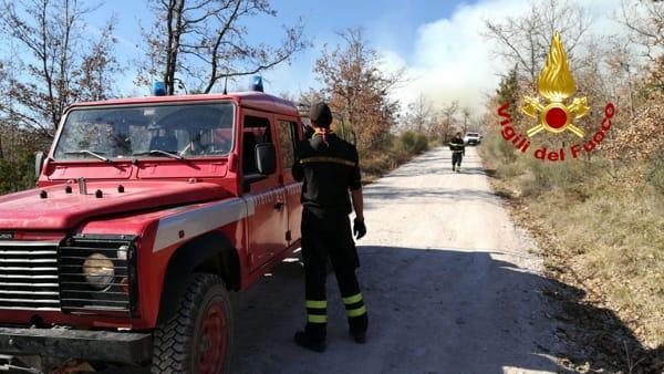 VIDEO In fiamme 16 ettari di bosco a Camporeggiano, in azione i canadair dei vigili del fuoco