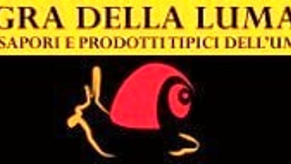 Sagra della Lumaca a Lacugnano, 40 candeline per una sagra tra le più amate