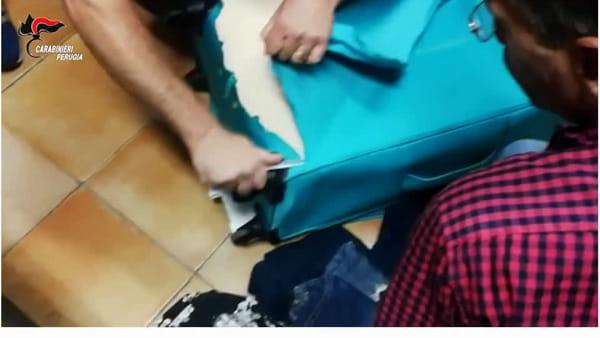 VIDEO - Carabinieri stroncano maxi traffico di droga: 156 arresti