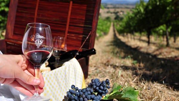 Sagrantino Experience, per chi ama vino e natura