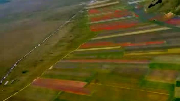 Castelluccio di Norcia, la fioritura vista dal cielo: le immagini dall'elicottero del Sasu