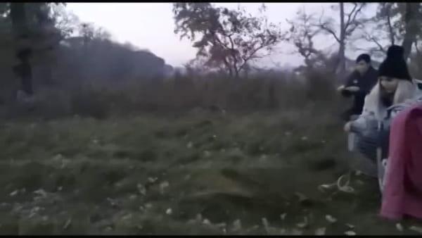 VIDEO - La volpe ferita e curata riconquista la libertà: la veloce fuga nei campi