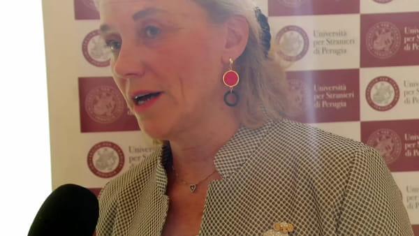 """VIDEO Militari feriti in Iraq, l'ambasciatrice Belloni: """"Il nostro pensiero a loro e alle famiglie"""""""