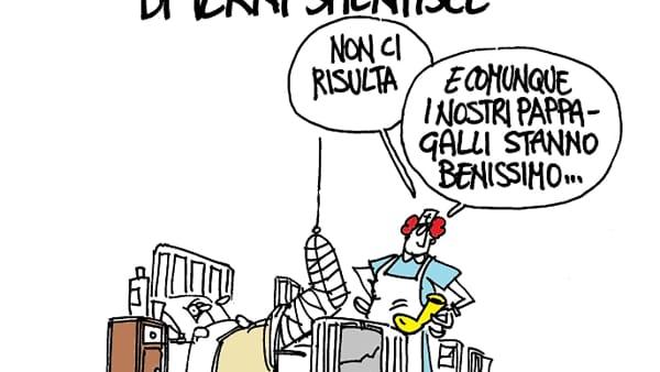 vignetta-rondini-2
